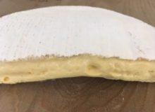 Cornish Brie Cheese